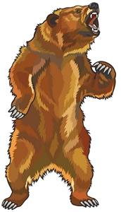 Angry She-Bear